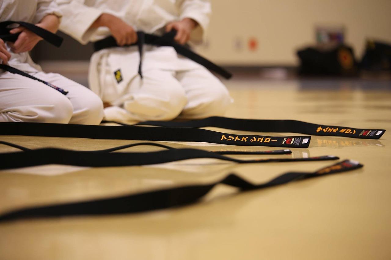 black-belt-894190_1280